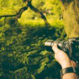 photo-septenber