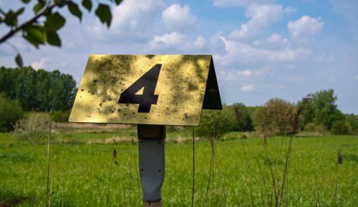 【開設から4ヶ月】ブログのPVや収益など運営報告
